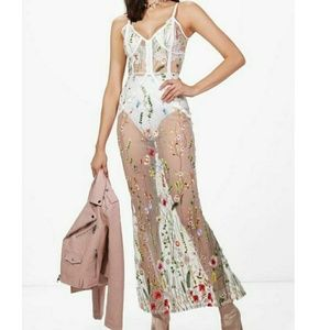 Beautiful Embroidered Sheer Dress
